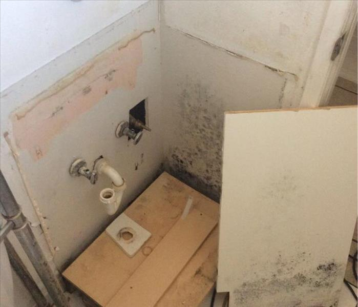 Mold In Master Bathroom In Kingman, AZ Before